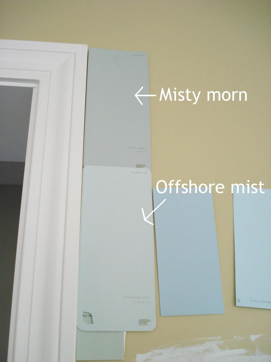 Misty Gray Paint Color